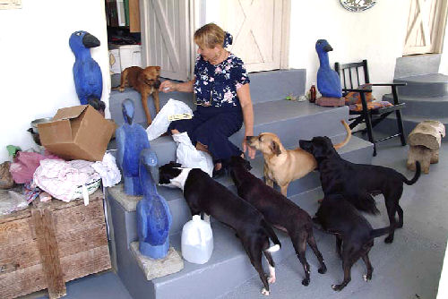 luise with dogs